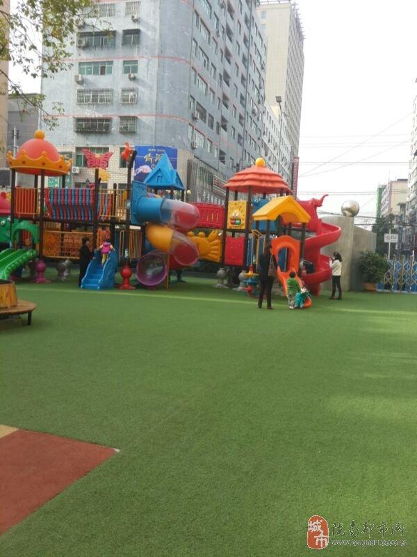 武都区幼儿园亲子运动会精彩纷呈