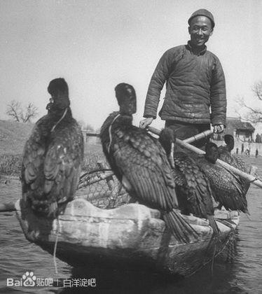 白洋淀70年代老照片论坛图片图片