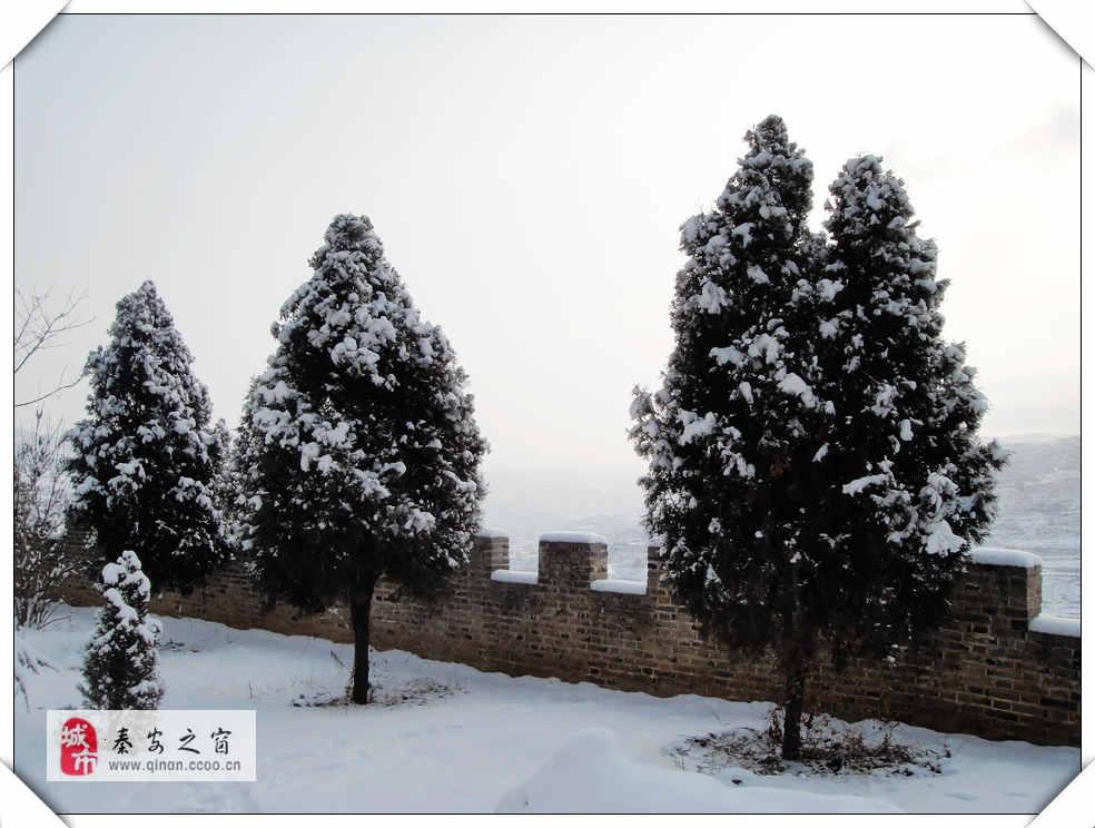 2014年新春第一场雪随拍之二
