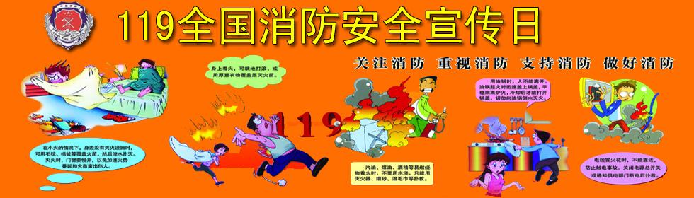夹江在线2013全国119消防安全宣传日