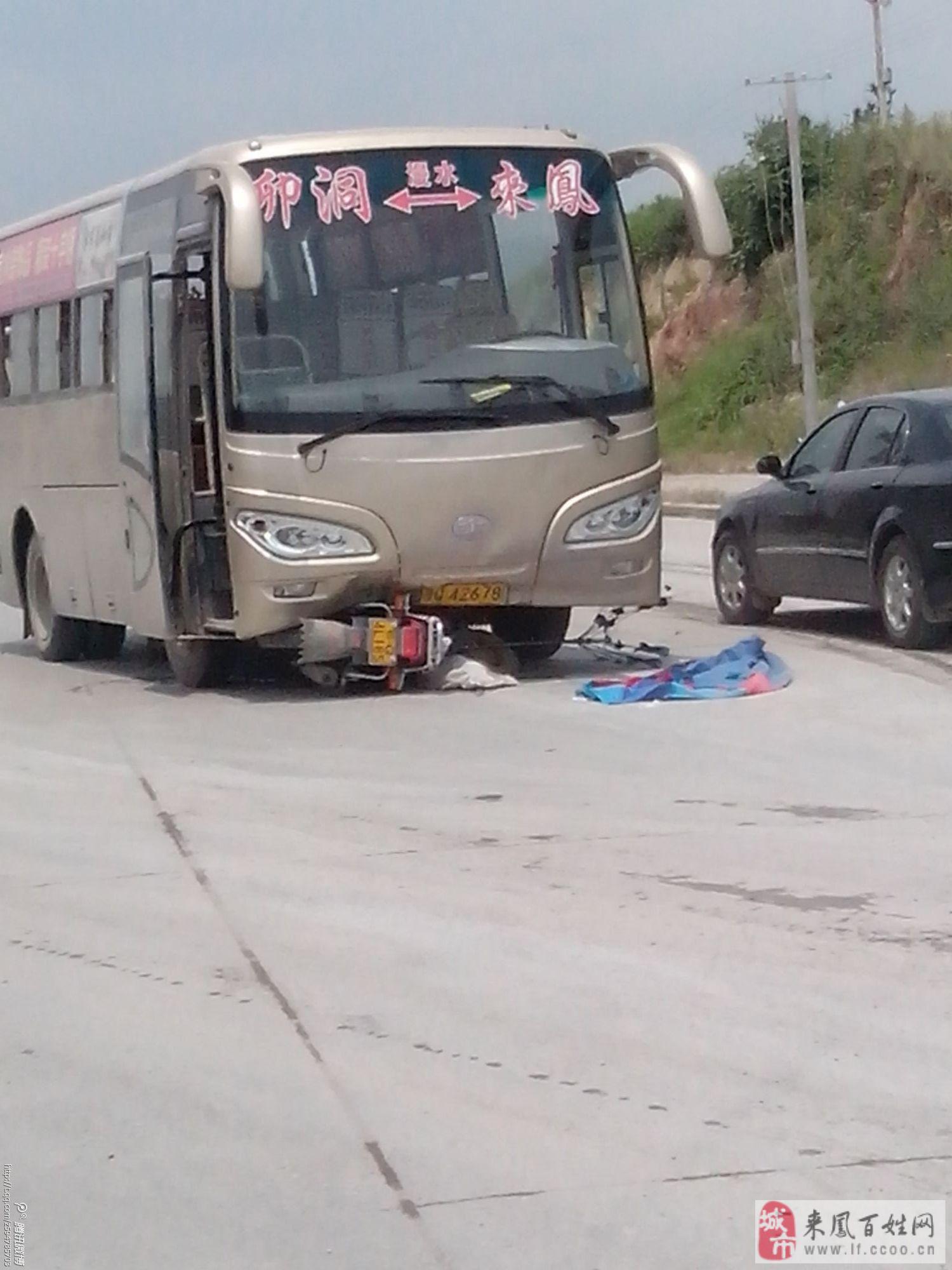 这样的车祸真是少见 百姓说事高清图片
