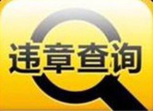 广东违章网 http://www.gdwzpt.com/