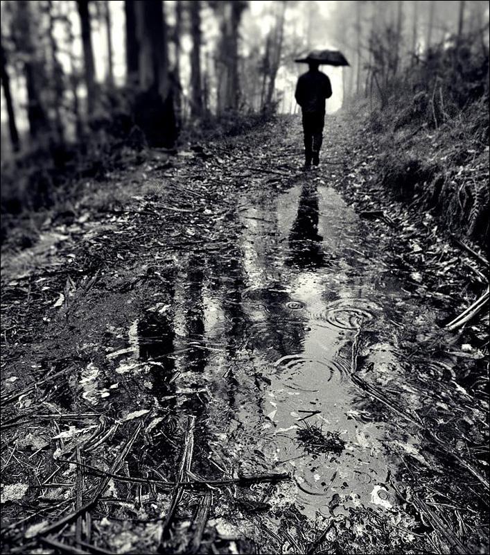 雨天落寞背影qq头像