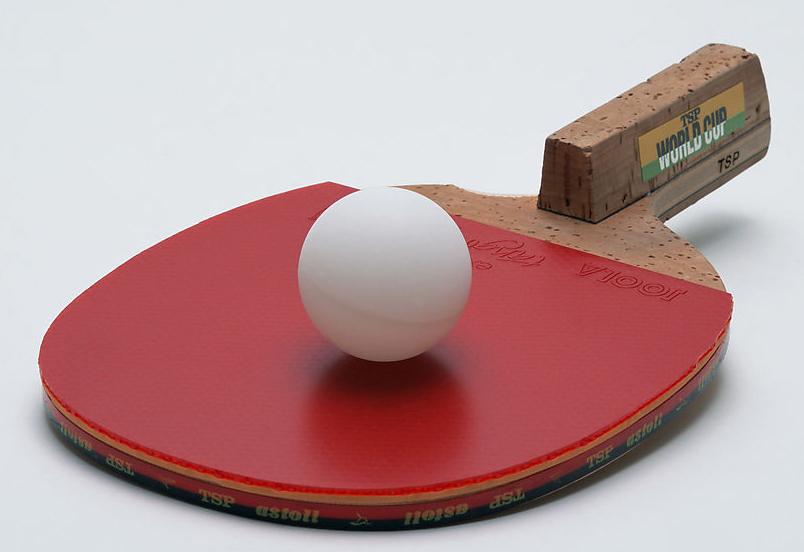 武功乒乓球协会