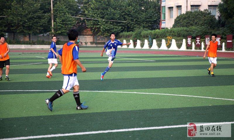 小学生足球队徽简笔画