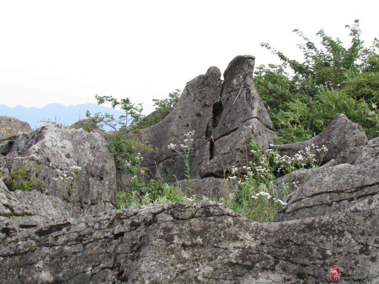 主题: 南天湖有个天然石林