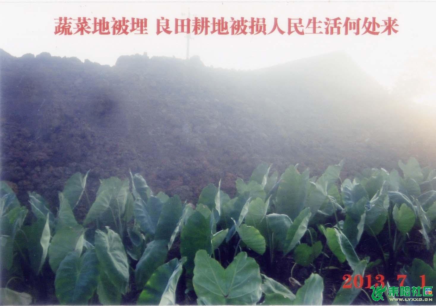 金南村17队村民土地被抢夺,开发商雇凶殴打村民至重伤,派出所不出警!