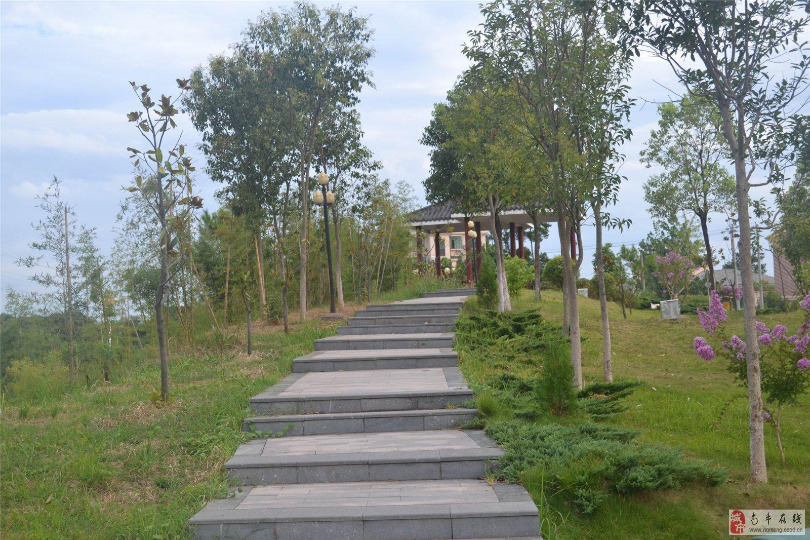 [原创]南丰琴湖公园风景照