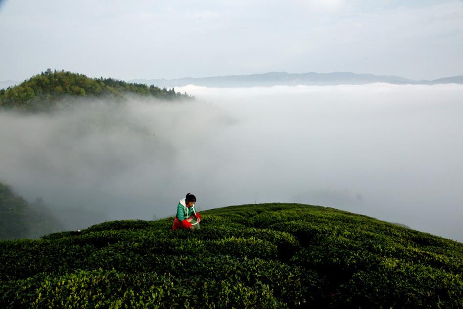 湄潭云贵山风景