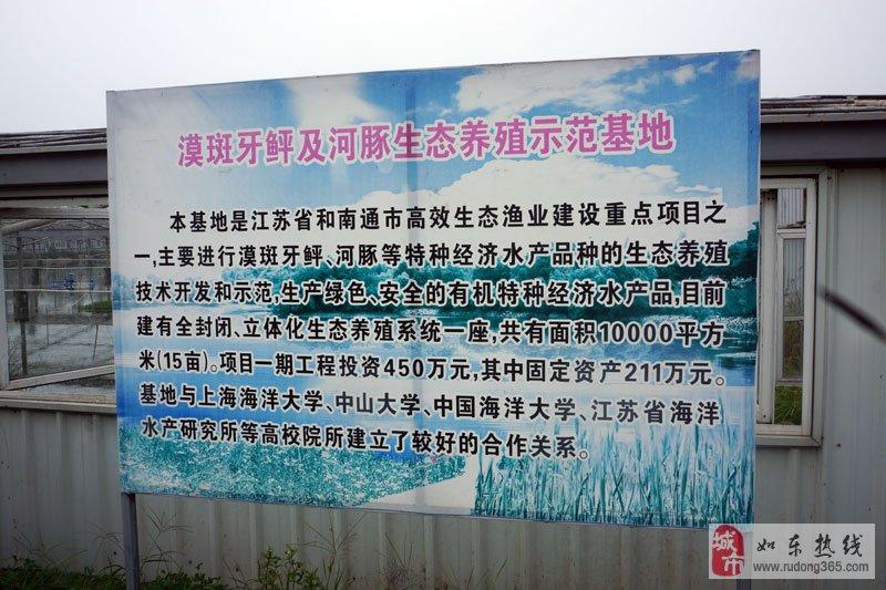 如东首届网络美食文化节之岔河站在水一方生态园