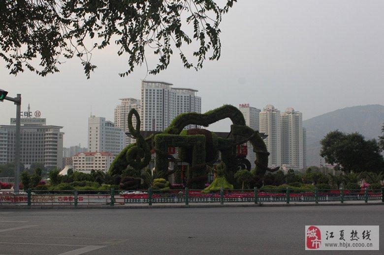 青海行 西宁中心广场图片