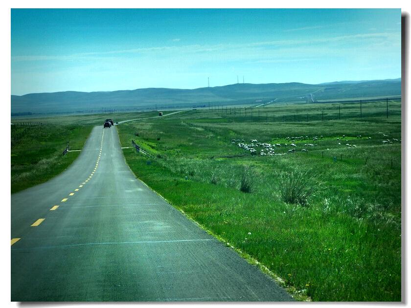 从东乌珠穆沁旗到伊尔施据说有三条路可走 最北边有一条土路,也就是狼图腾小说里说过的边防公路 南边经乌拉盖巴彦胡硕还有条油路土路混合的小路 这两条路之间的就是我们走的s303 那位说了既然s303破的匪夷所思 为啥不走另外两条? 这事儿吧 你就得问欧阳大官人了 因为是他一直在前面领着 其实从满都胡宝拉格转弯时 还有一条直插草原的捷径 那是一条深入额仑草原深处的路 这路的终点会和303相交 说是路 其实那只是几道车辙而已 但从此处走能少在s303颠簸两百多公里 而且此路深入草原自是美得无法言喻 怎奈这路风景虽