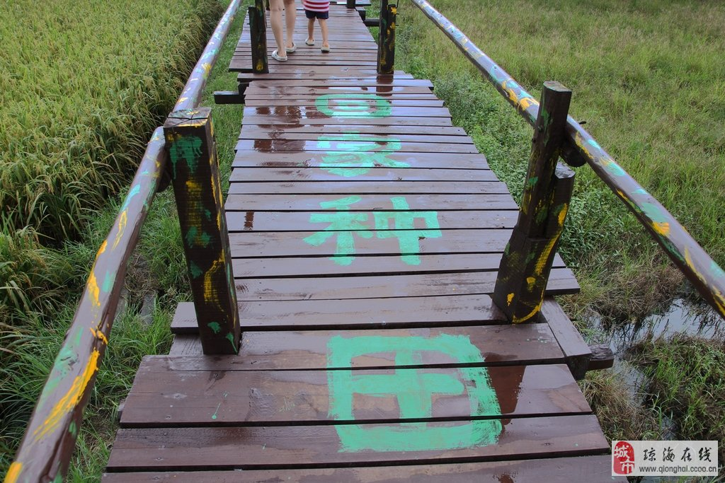 flash素材石桥