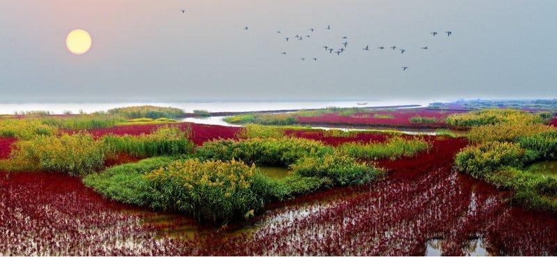 >> 文章内容 >> 热爱家乡 亲近湿地  关于热爱祖国热爱家乡民族团结的