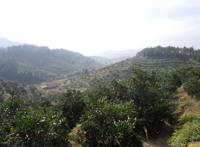 全南瑶山风情风景图片