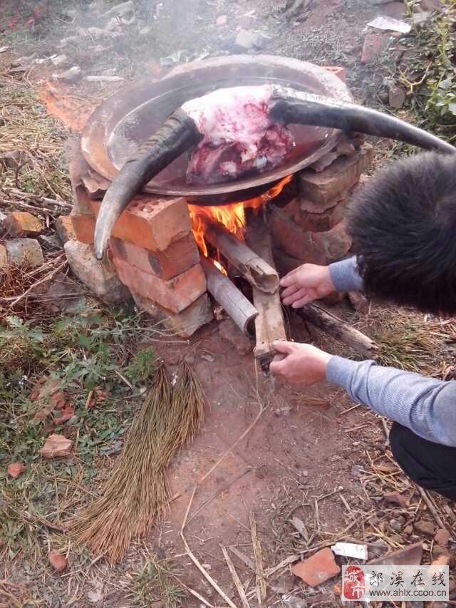 大锅炖牛头