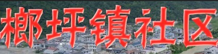 榔坪镇社区