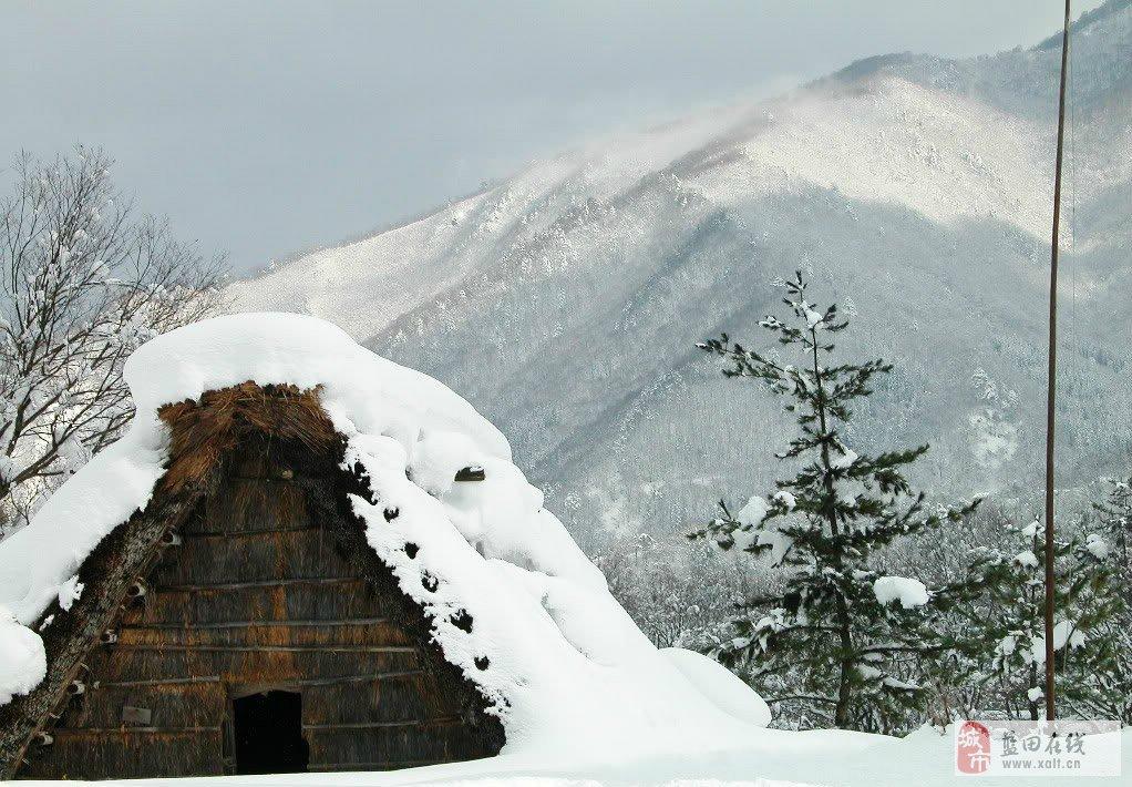 微信头像冬天雪景