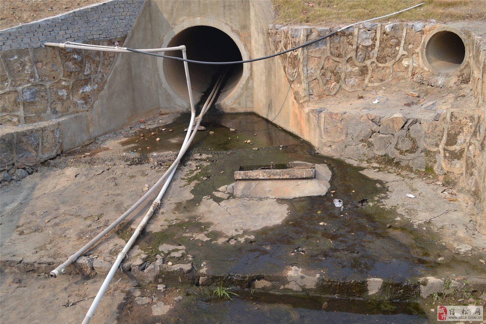 宿松山水公园水质令人堪忧!