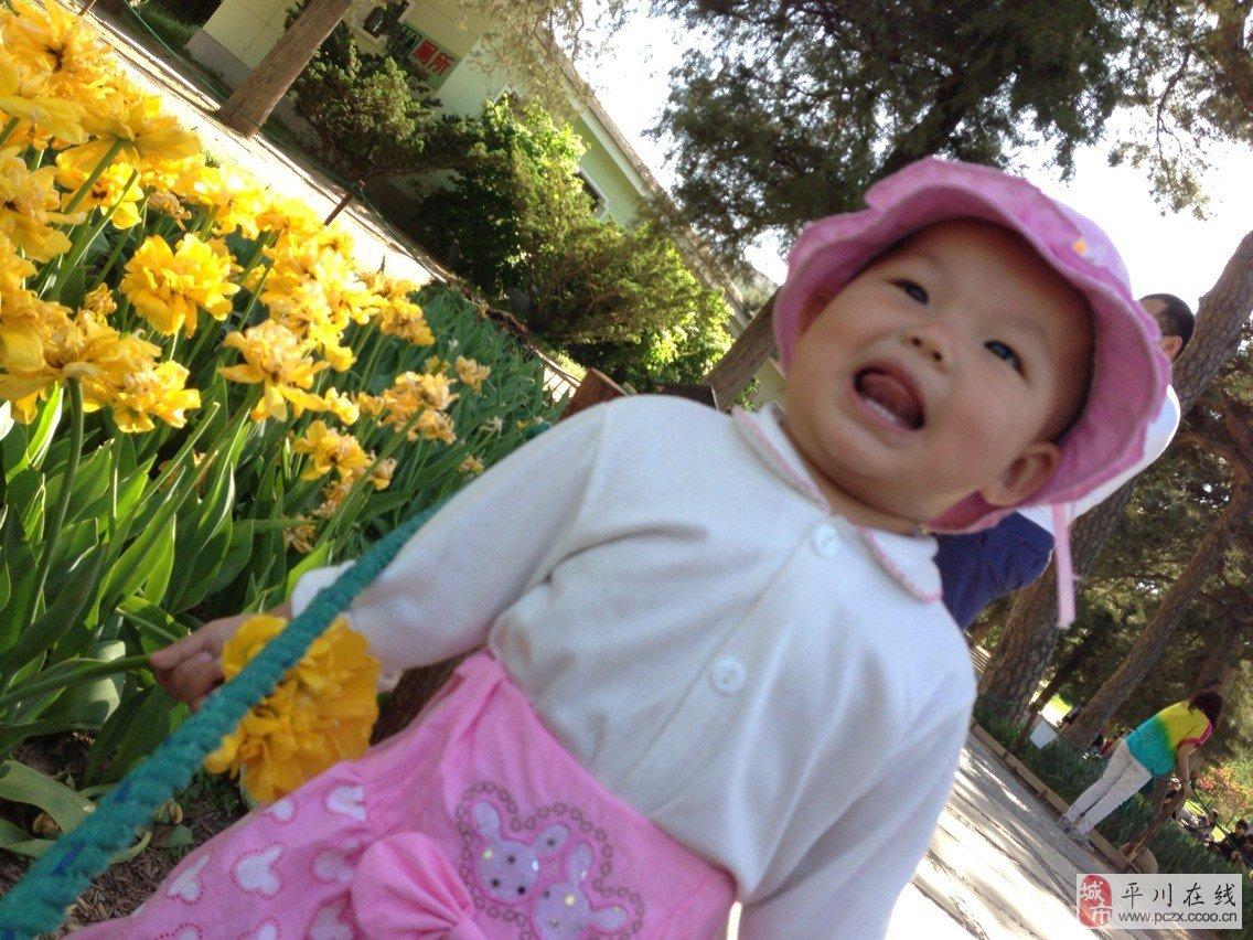 1009可爱宝宝——博妍