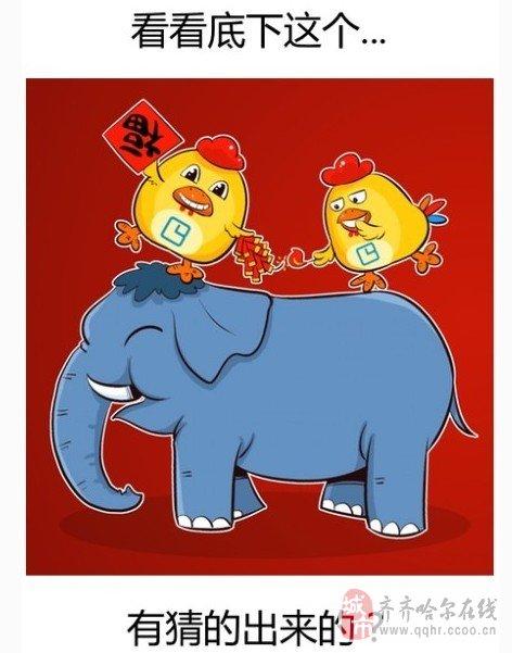可爱的微信照片大象