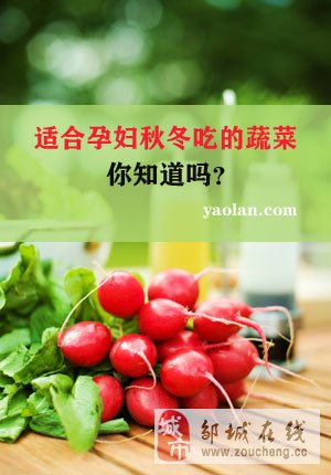 适合孕妇秋冬吃的蔬菜 你知道吗?
