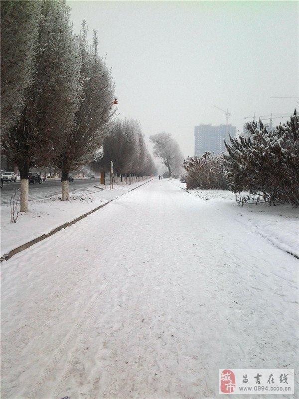 微信头像冬天风景图