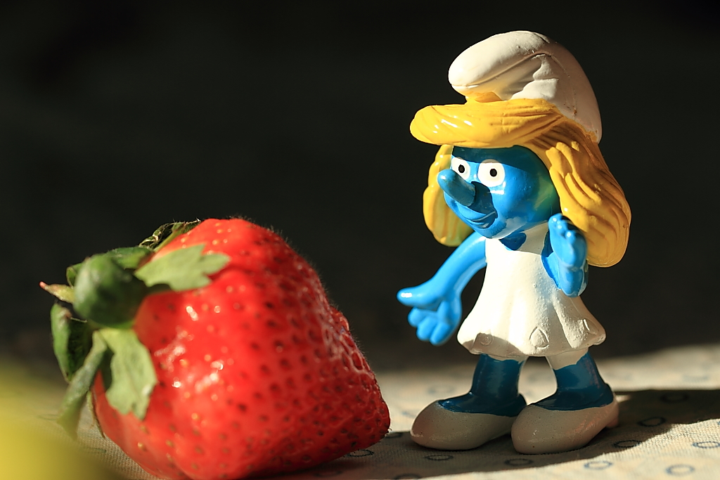 【照片】可爱的蓝精灵——血色浪漫拍摄!