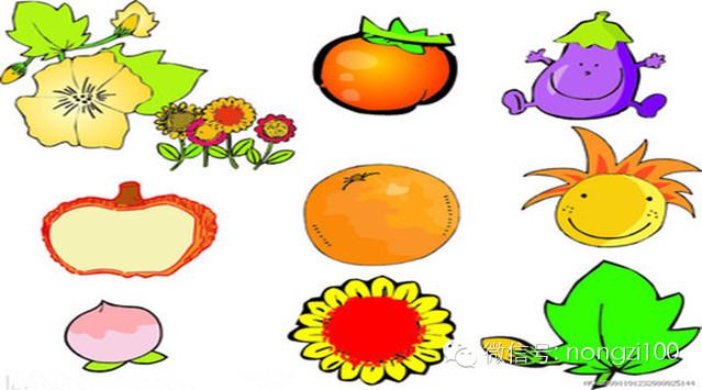 十种蔬果不能吃的部位!(紧急通报)