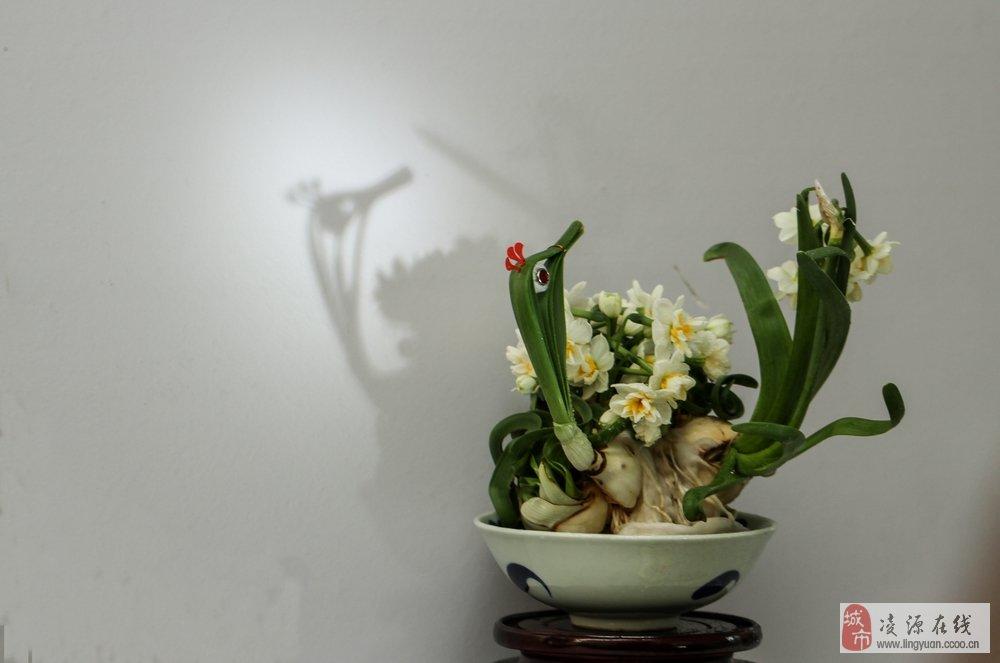 水仙花雕刻艺术作品展(二)