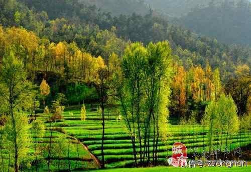 包头到康县阳坝自然风景区多少公里