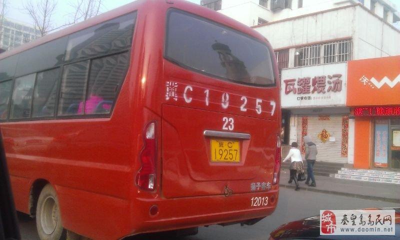 今天秦皇岛怎么出现这么多23路公交车?