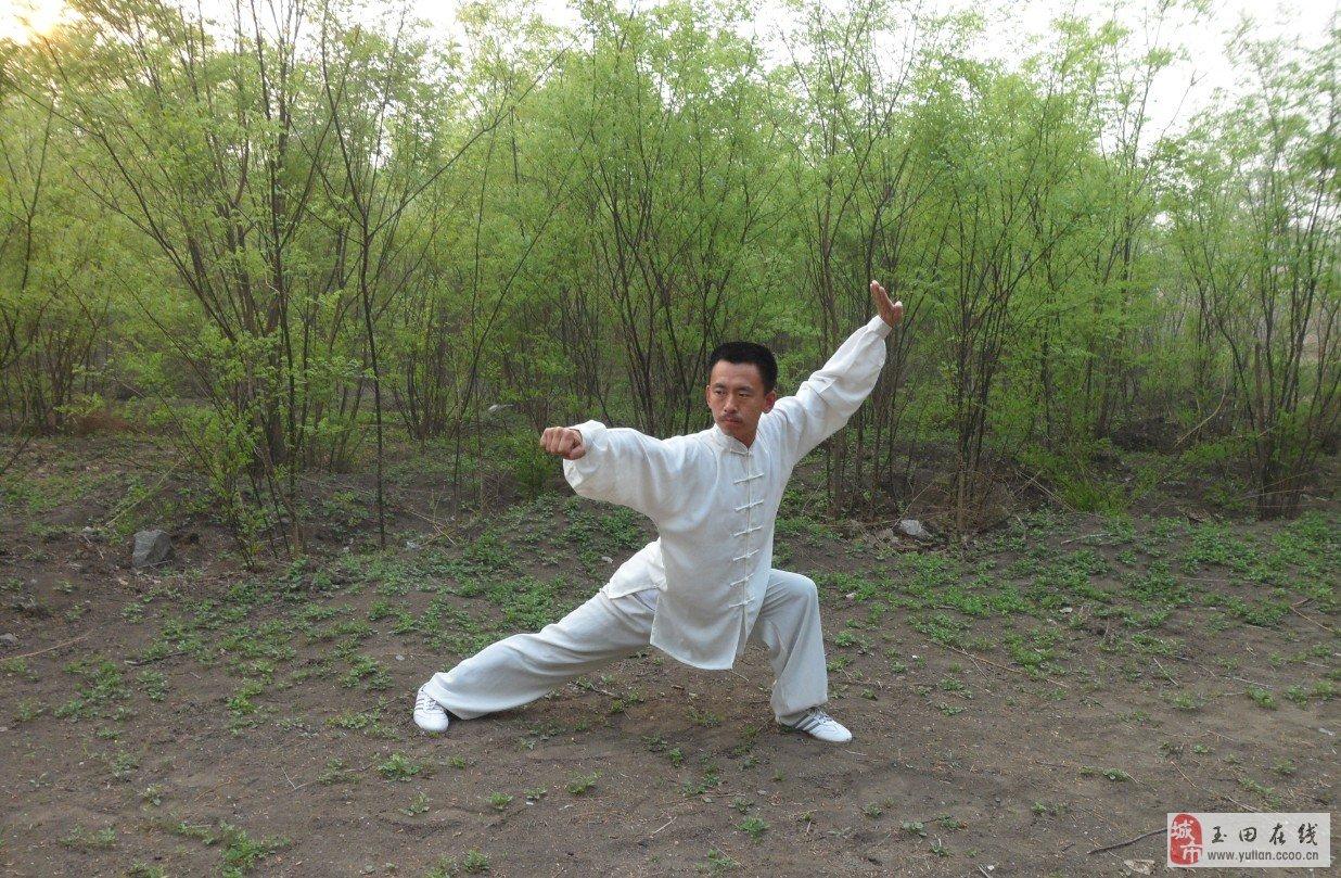 华夏文化遗产武术少林拳传承人图片