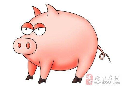 可爱猪睡觉头像