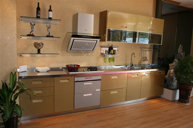 冰箱开启式钢晶门图片