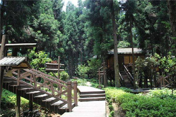 坪坝营森林小木屋