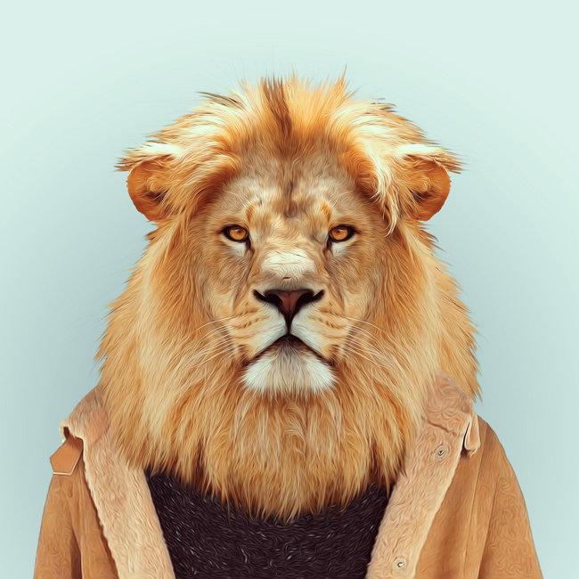 帅气的动物也可以成为明星