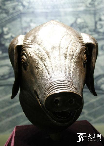 圆明园十二生肖兽首中的猪首铜像-4尊圆明园生肖兽首抵达新疆博物馆