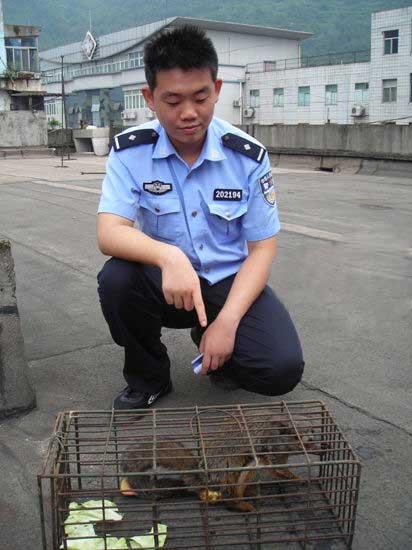 略阳火车站飞进二级保护动物 铁路民警将其放生