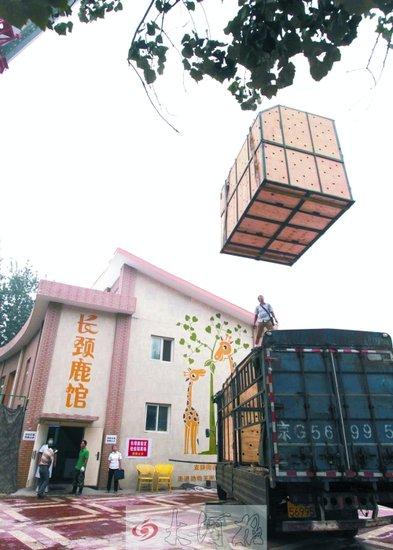 郑州野生动物园地图