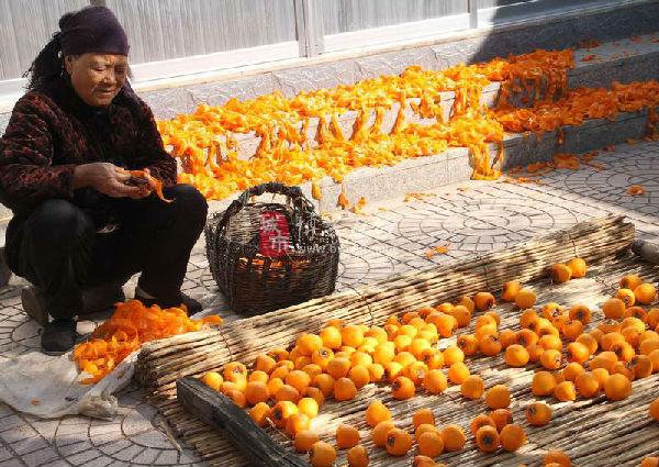 金秋柿子喜丰收