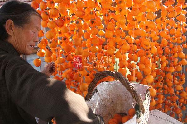 秋天丰收的果实图片手工制作