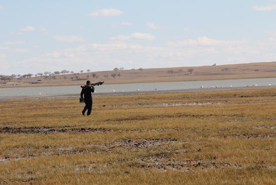 正蓝旗森林公安局开展保护过境候鸟专项行动和防火检查