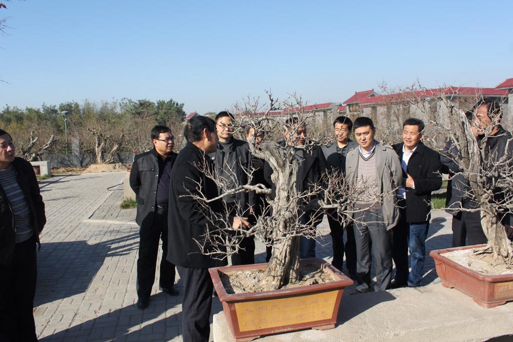 常利华等带队赴河南考察学习林业工作