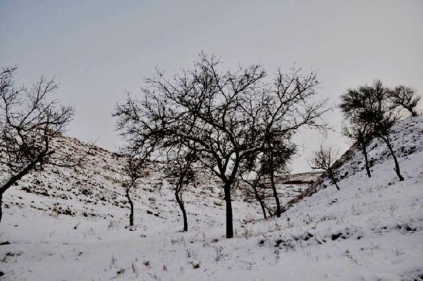 冬天的家乡