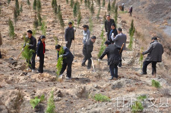 文县干部职工开展春季植树造林活动