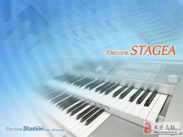 双排键电子琴俗称电子管风琴图片