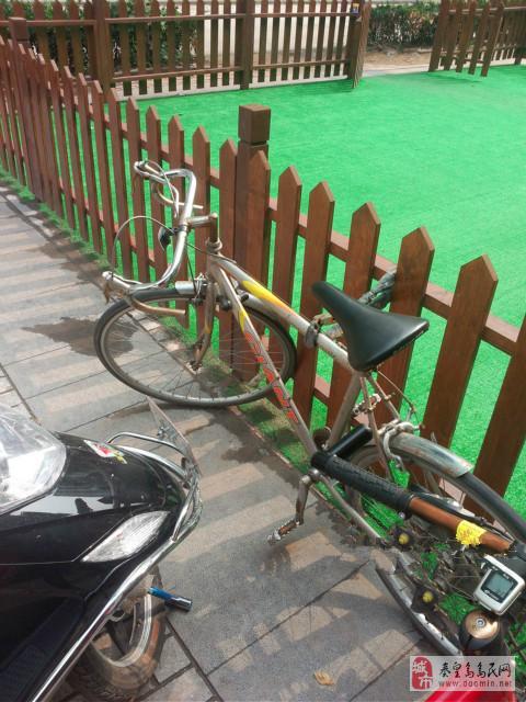 车子功能完好捷安特公路赛自行车出售 高清图片