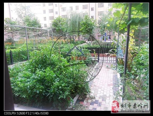 富河国际B区一楼带花园出售