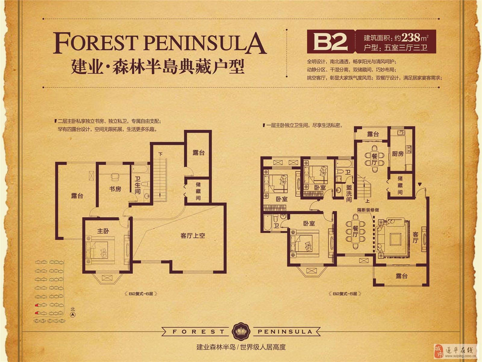遂平建业森林半岛户型图图片